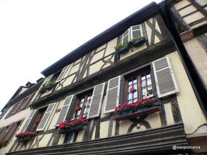 2007/10/26;普通のお家の窓際だってとってもかわいらしいのです。