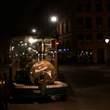 Strasbourg:夜のストラスブルグ