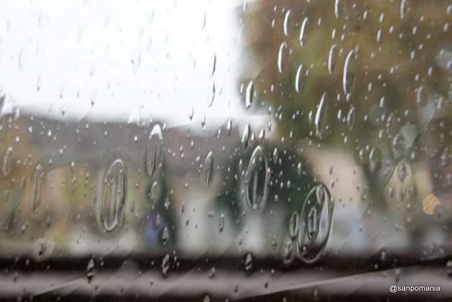 2011/11/15;気泡の多い窓