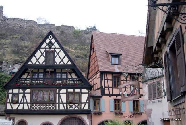 2011/11/16;少しだけピンクの家も