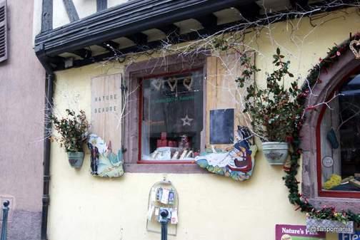 2011/11/16;Nature et Beaute;ウインドウディスプレイ