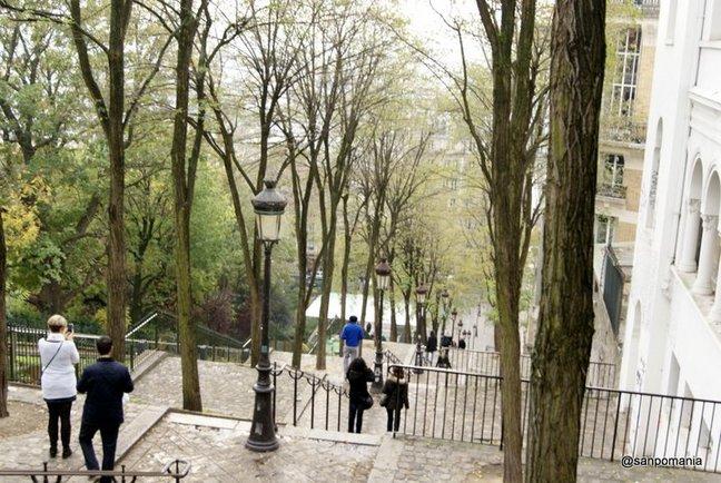 2011/11/18;広場脇の階段は街路樹が絵になる