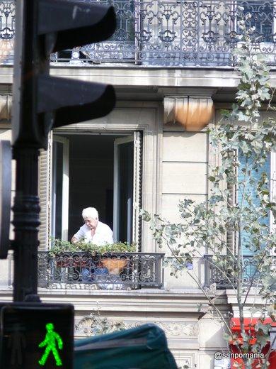 2007/10/28;パリお花のお手入れ