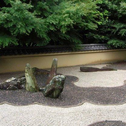 2009/07/26;龍の庭