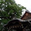 :新熊野神社