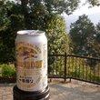 :山頂から権現茶屋へ@高尾山