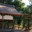 上賀茂神社:賀茂別雷神社