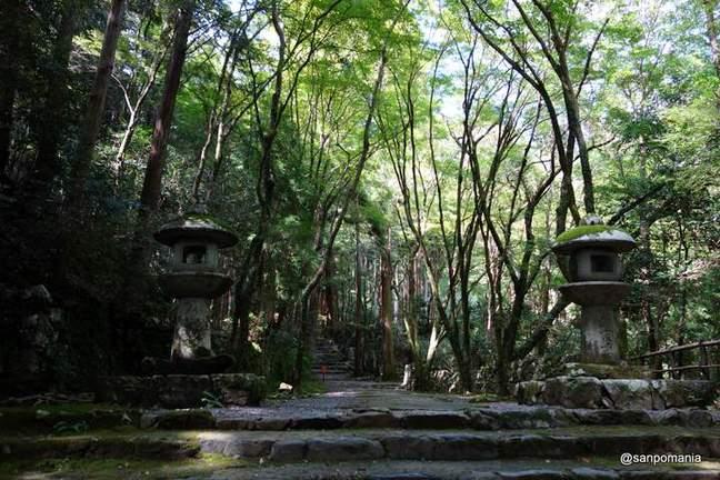 2012/09/16;高山寺表参道の灯籠