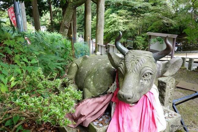 2012/09/17;狛牛?