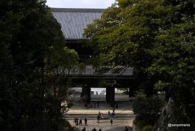 2013/01/20;男坂の上から山門を見下ろす。