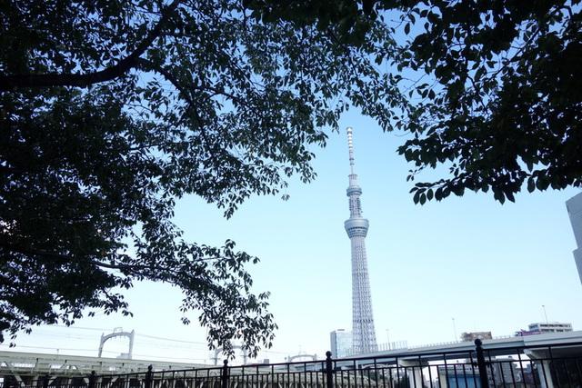 2014-09-13;隅田川越しのスカイツリー