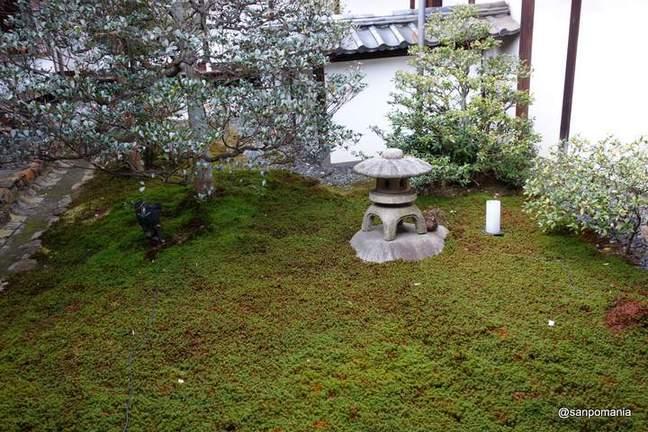 2013/01/20;石灯籠と苔;雲龍院