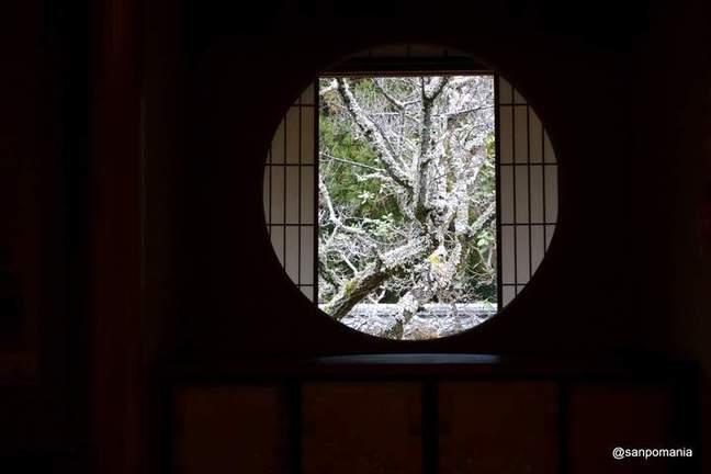 2013/01/20;書院の悟りの窓;雲龍院