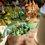 MOOMIN!:トーベ・ヤンソン生誕100周年記念 ムーミン展@銀座松屋