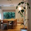 oto no ha Cafe:オトノハ カフェ