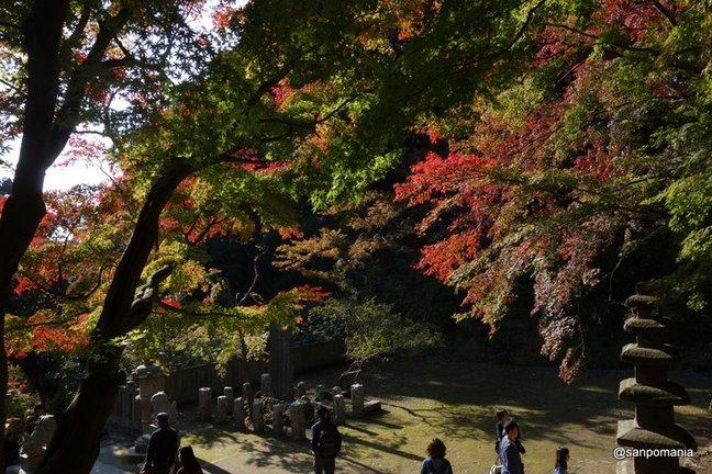 2014/11/23;半僧坊に向かう階段2;建長寺