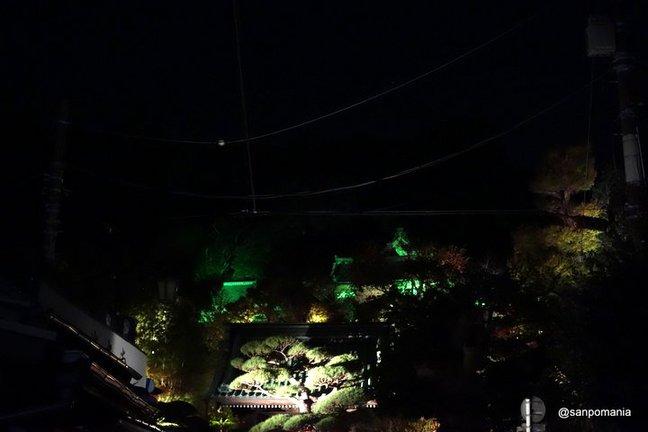 2014/11/23;長谷寺