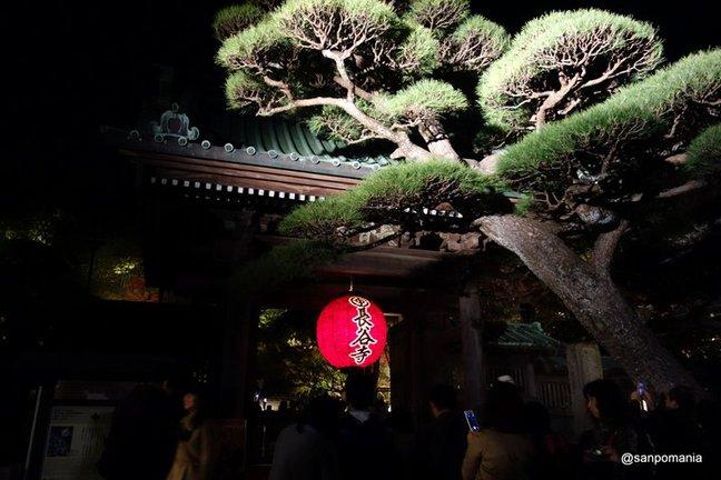 2014/11/23;入口の提灯;長谷寺