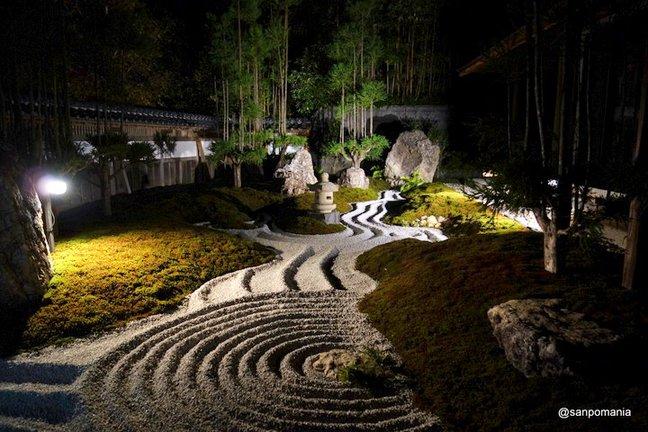 2014/11/23;枯山水;長谷寺