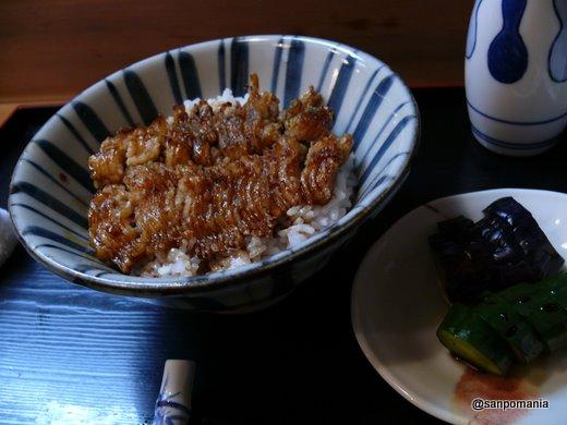 2009/05/22 鱧丼