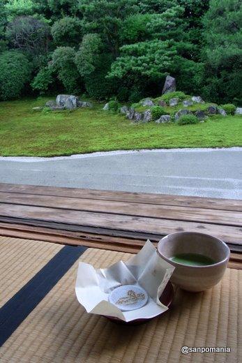 2009/07/26;芬陀院のお茶@東福寺