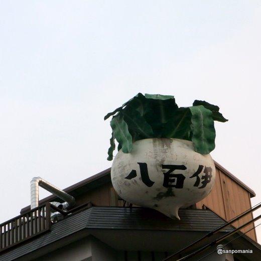 2011/01/09;八百伊の看板