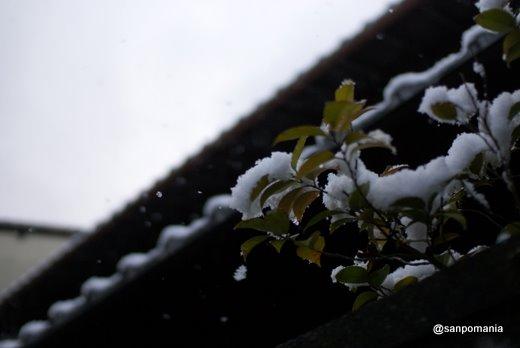 2011/01/10;銀閣寺の総門