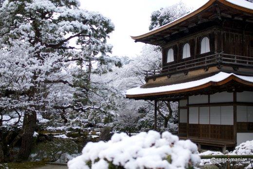 2011/01/10;銀閣の雪景色