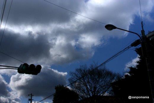 2011/01/10;お散歩中