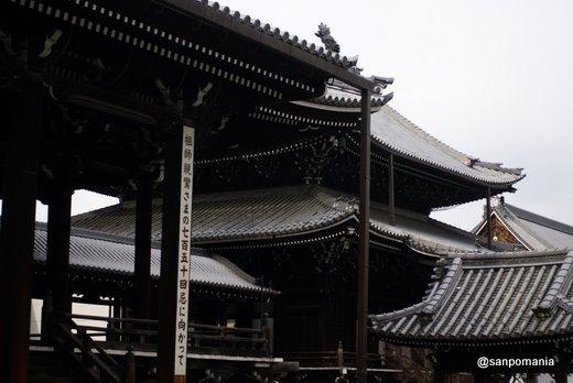 2011/02/13;興正寺の御影堂越しの阿弥陀堂