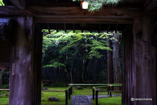 2011/06/12;高桐院の門