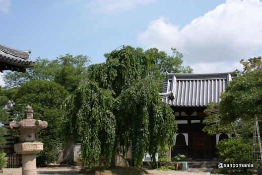 2011/06/25;平等院 羅漢堂