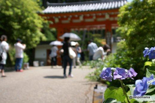 2011/06/25;三室戸寺の外観