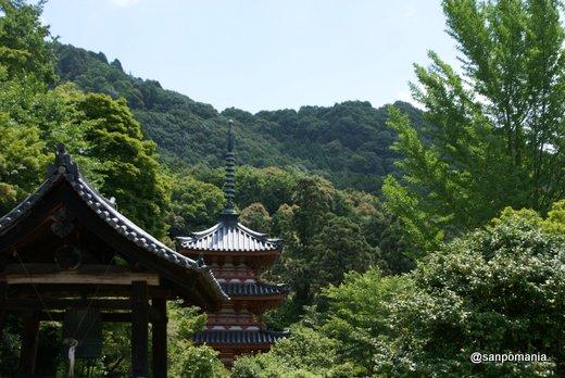 2011/06/25;三室戸寺の三重塔と鐘楼