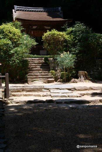 2011/06/25;宇治上神社の摂社春日神社本殿(たぶん)