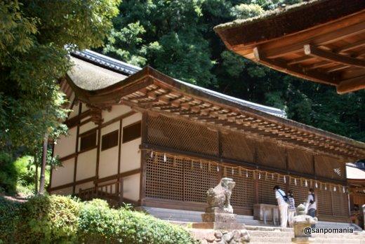 2011/06/25;宇治上神社の本殿