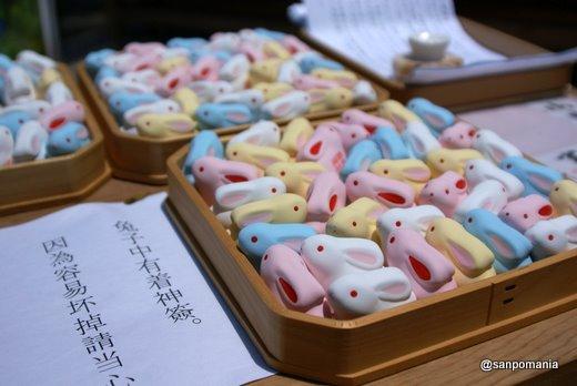 2011/06/25;宇治上神社のうさぎの群れ