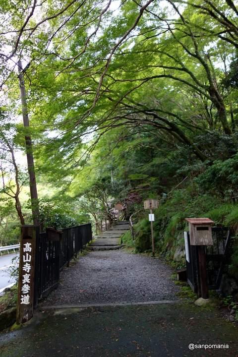 2012/09/16;高山寺裏参道