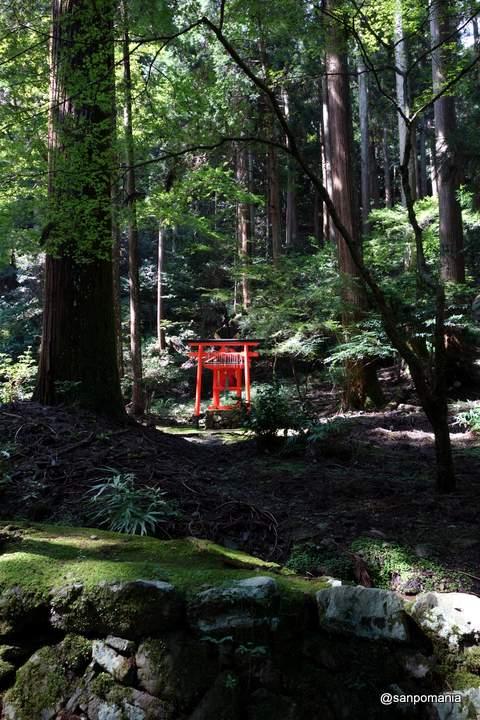 2012/09/16;高山寺金堂脇の春日大社