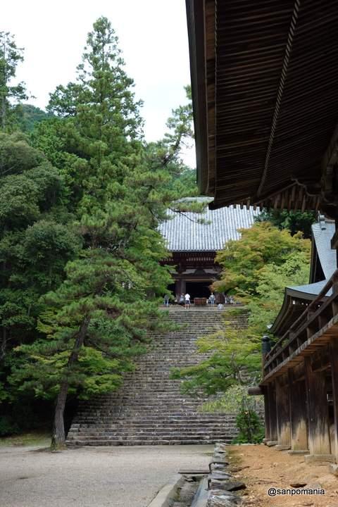 2012/09/16;神護寺の旧金堂から見た昭和生まれの金堂