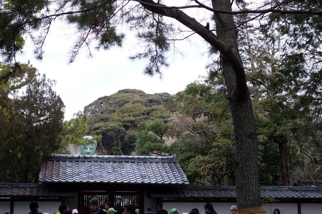 2015/01/24;鎌倉大仏