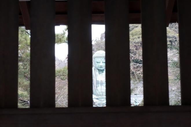 2015/01/24;山門;鎌倉大仏