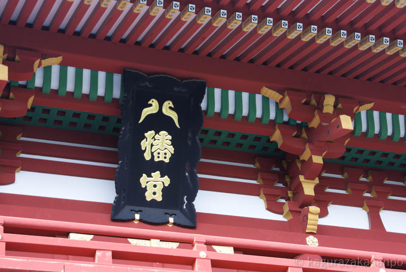 kamakura_hachimangu_20110505-161909.jpg