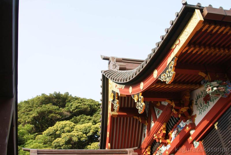 kamakura_hachimangu_20110505-162032.jpg