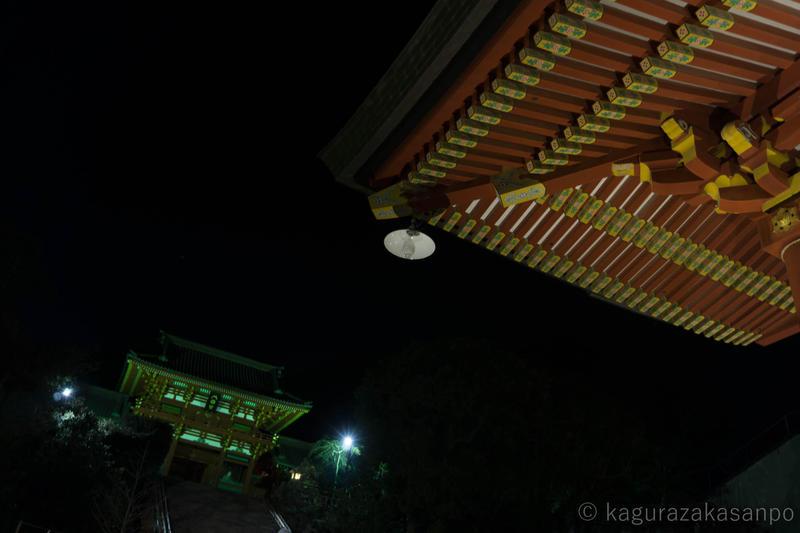 kamakura_hachimangu_20181228-200947.jpg
